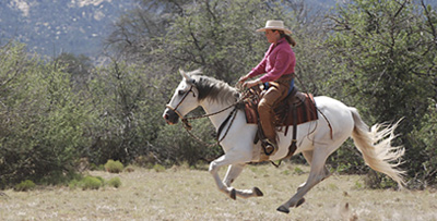 natural horsemanship teacher Karen Scholl