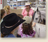 Presentations at horse expo on women's horsemanship by Karen Scholl